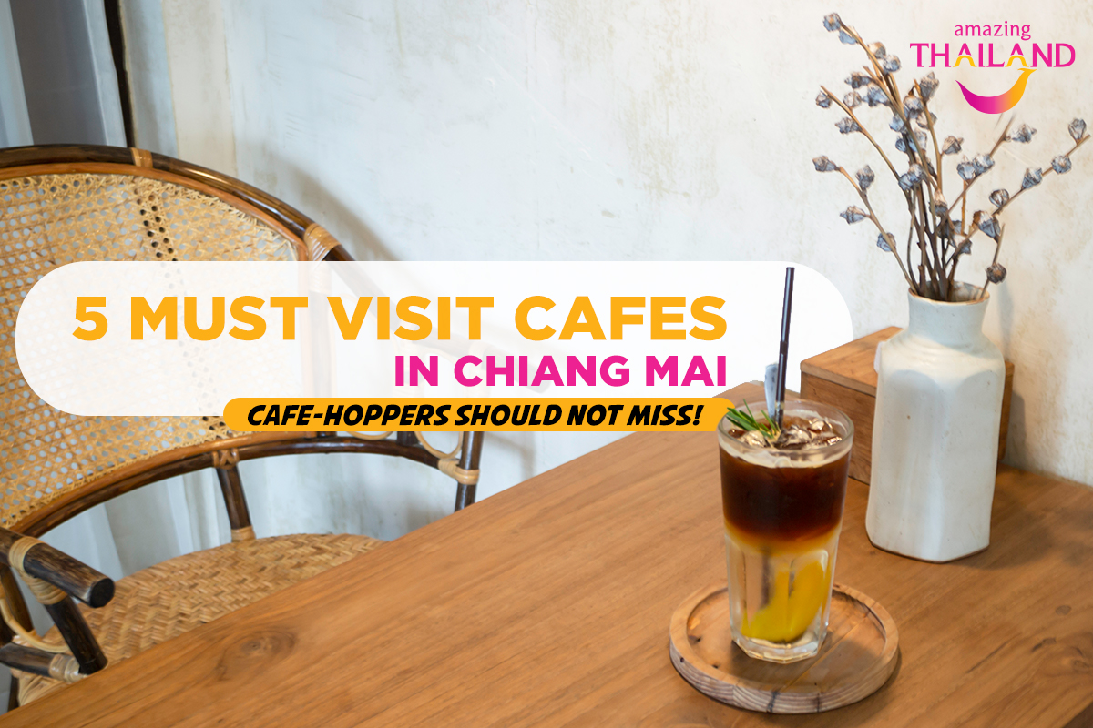 must-visit-cafes-in-chiang-mai