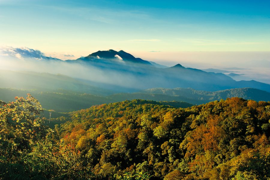 Doi Inthanon National Park, Chiang Mai Published in Inthanon, Mae Klang Luang-among the Clodness, Osotho Magazine, Issued : February, 2013